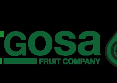 Logotipo Bargosa 60 años transparente-05